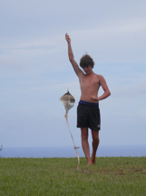 Pitcairn Island, Big Flower - Brandon's Catches the Wind