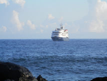 Pitcairn Island, Big Flower - First cruise ship of the season